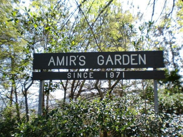 griffith park amirs garden amirs_garden - Amirs Garden