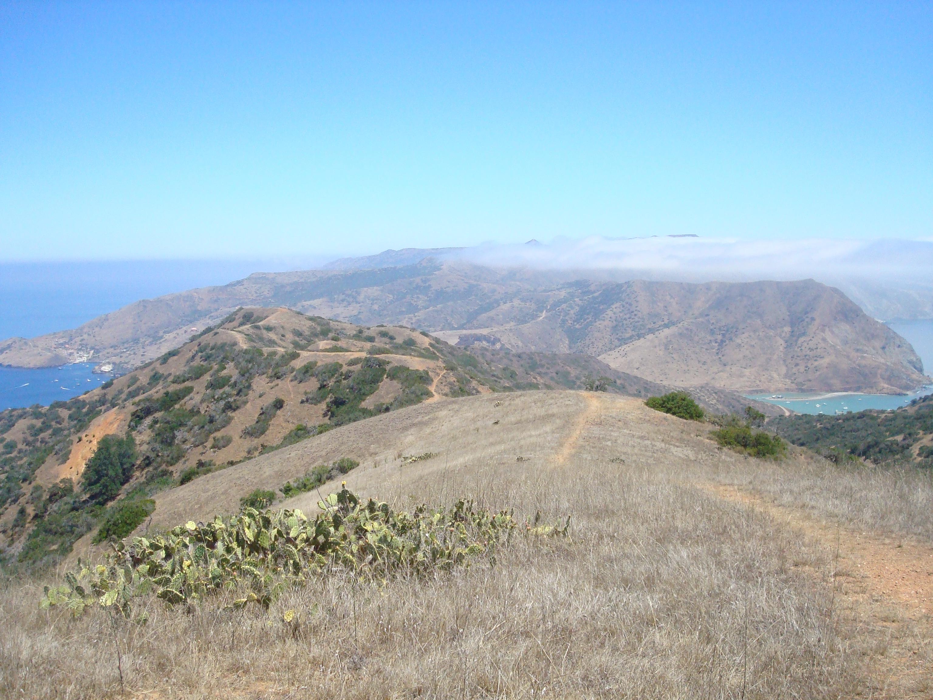 Catalina Island Via Two Harbors La Trail Hikers